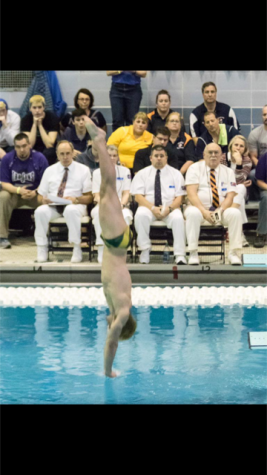 Swimming and diving team places fourth at state