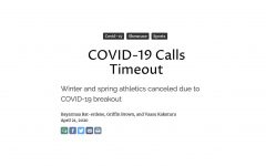 COVID-19 Calls Timeout