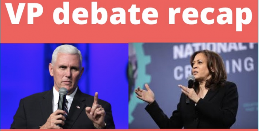 Vice Presidential Debate: Flies and Fact-checking